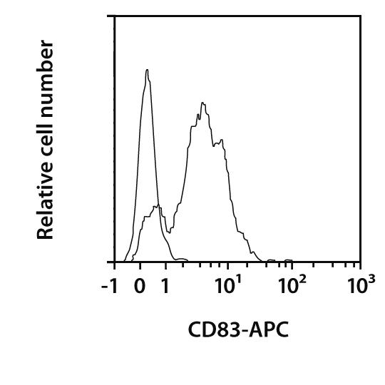 CD83 Antibody, anti-mouse, REAfinity™