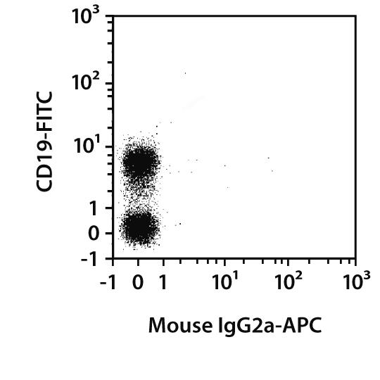 IgG1 Antibody, anti-rat