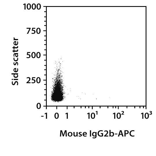 IgG2a Antibody, anti-rat