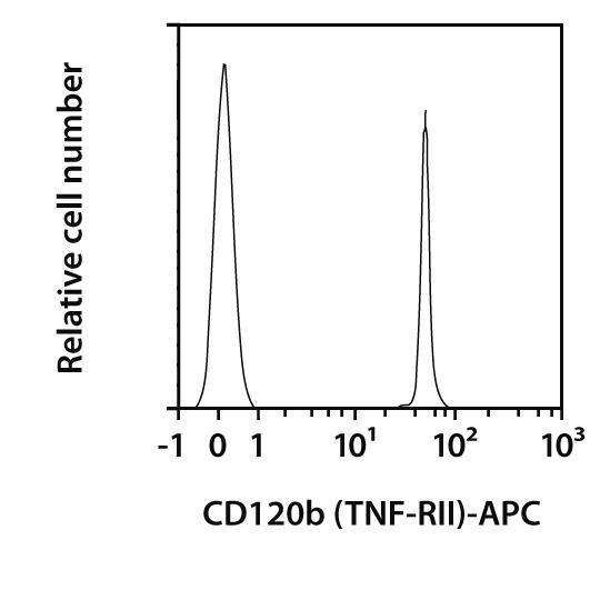 CD120b (TNF-RII) Antibody, anti-mouse, REAfinity™