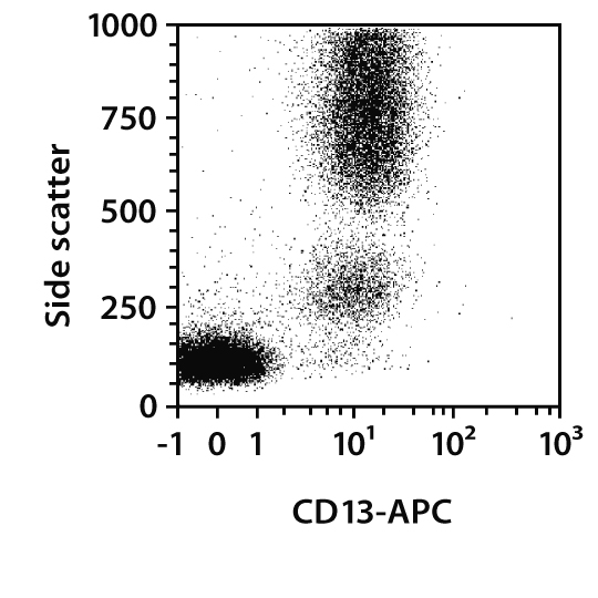 CD13 Antibody, anti-human, REAfinity™