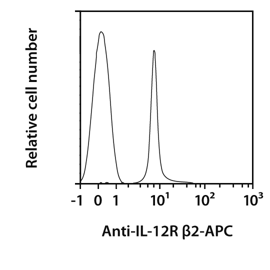 IL-12R β2 Antibody, anti-mouse, REAfinity™