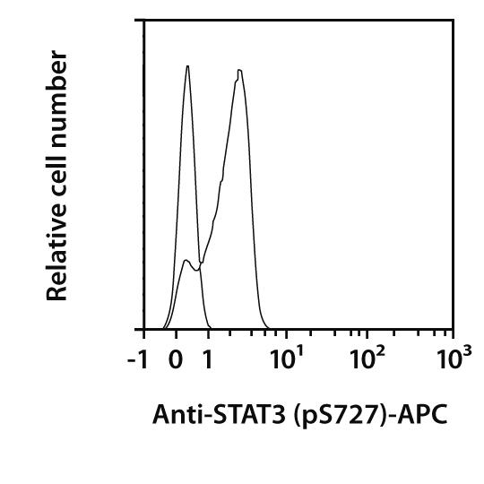 STAT3 pS727 Antibody, anti-human, REAfinity™
