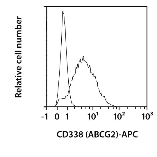 CD338 (ABCG2) Antibody, anti-human