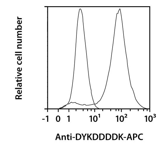 DYKDDDDK Antibody, REAfinity™