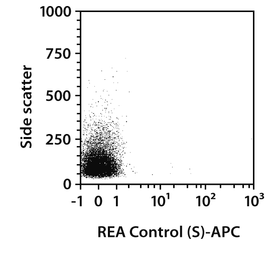 CD11b/c Antibody, anti-rat, REAfinity™