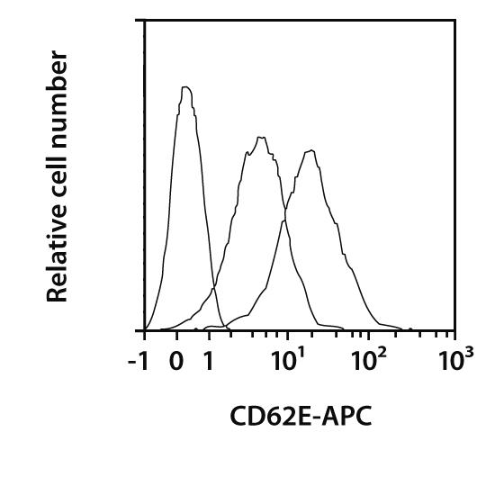 CD62E Antibody, anti-mouse, REAfinity™
