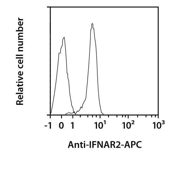 IFNAR2 Antibody, anti-human, REAfinity™
