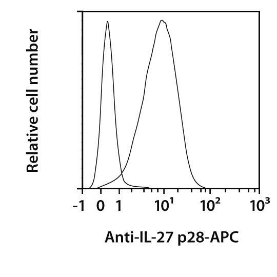 IL-27 p28 Antibody, anti-mouse, REAfinity™