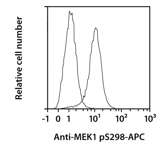 MEK1 pS298 Antibody, anti-human/mouse, REAfinity™
