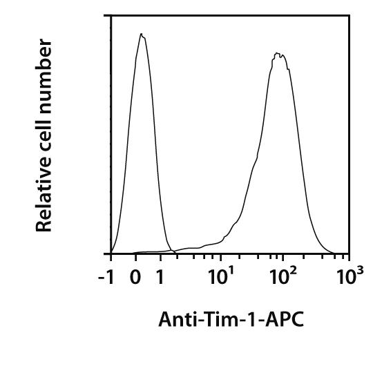TIM-1 Antibody, anti-human, REAfinity™