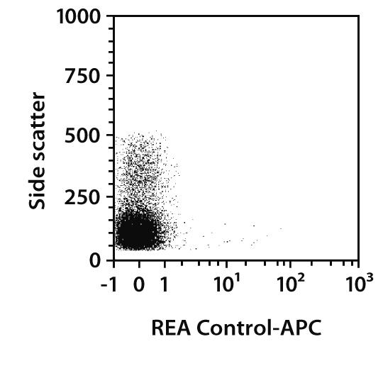 CD31 Antibody, anti-rat, REAfinity™