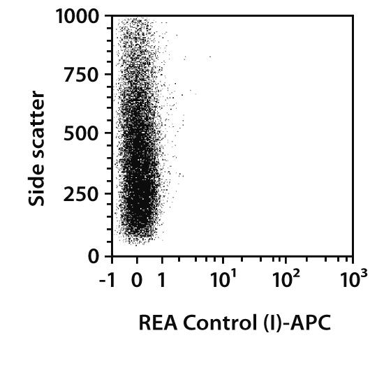 Myosin Heavy Chain Antibody, anti-human/mouse/rat, REAfinity™