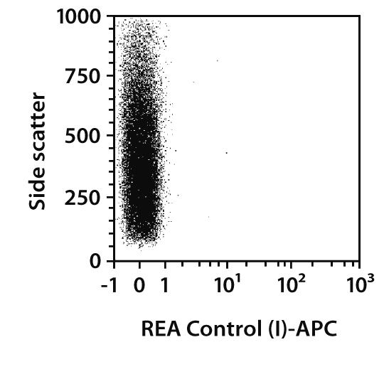 MLC2v Antibody, anti-human/mouse/rat, REAfinity™