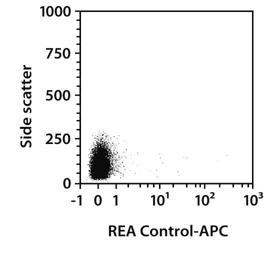 CD24 Antibody, anti-rat, REAfinity™
