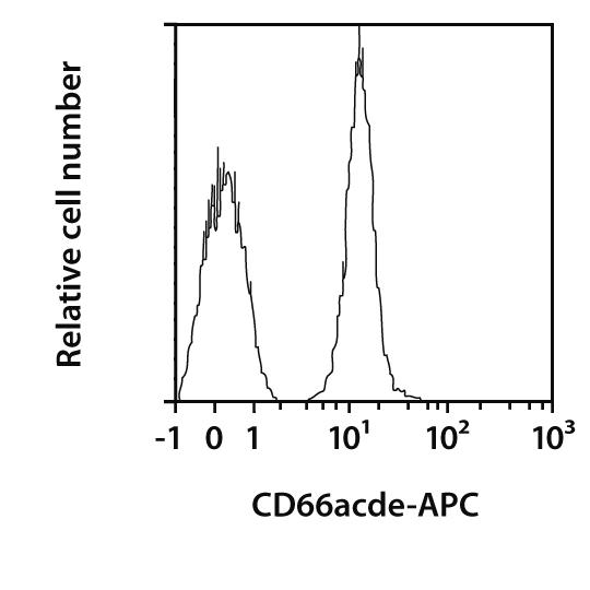 CD66acde Antibody, anti-human, REAfinity™