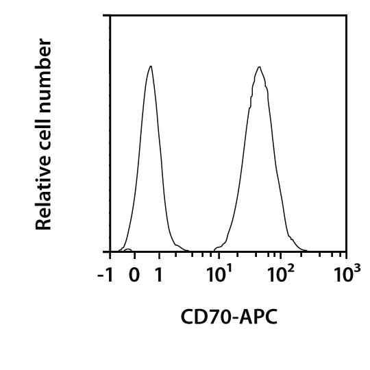 CD70 Antibody, anti-human, REAfinity™