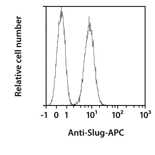 Slug Antibody, anti-human, REAfinity™