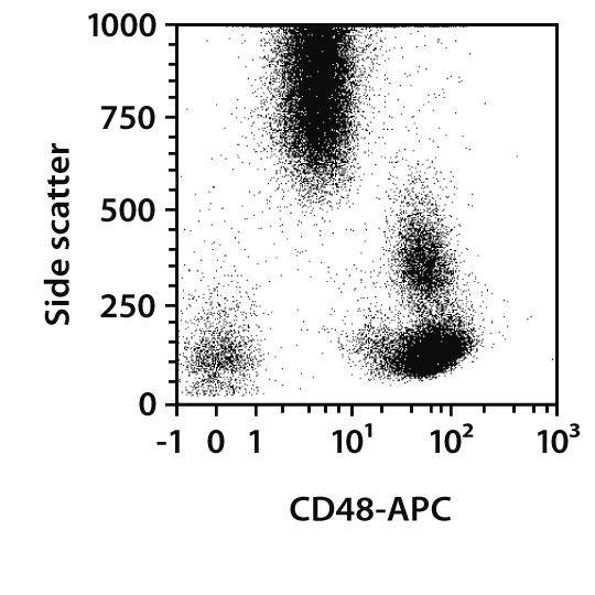 CD48 Antibody, anti-human, REAfinity™