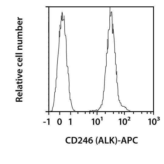 CD246 (ALK) Antibody, anti-human, REAfinity™