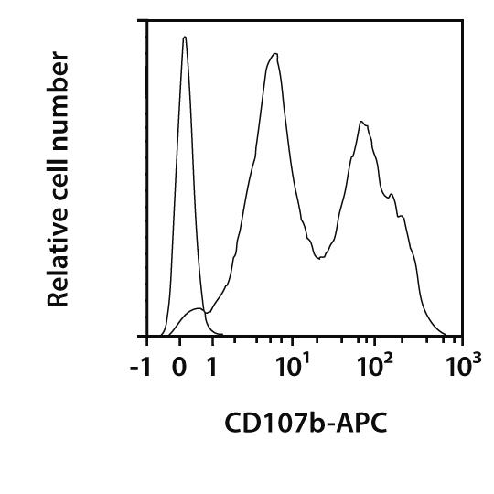 CD107b Antibody, anti-mouse