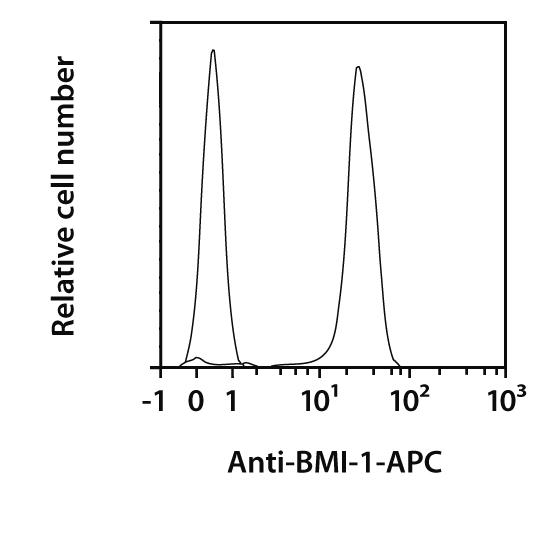 BMI-1 Antibody, anti-human, REAfinity™