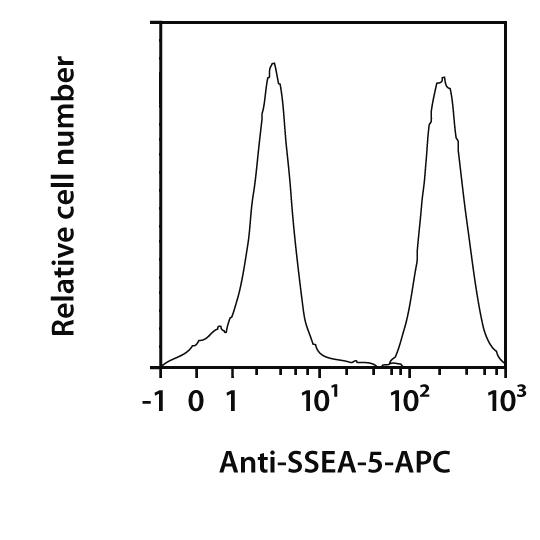SSEA-5 Antibody, anti-human