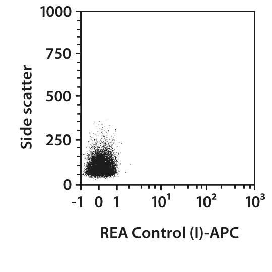 IRAK4 Antibody, anti-human, REAfinity™