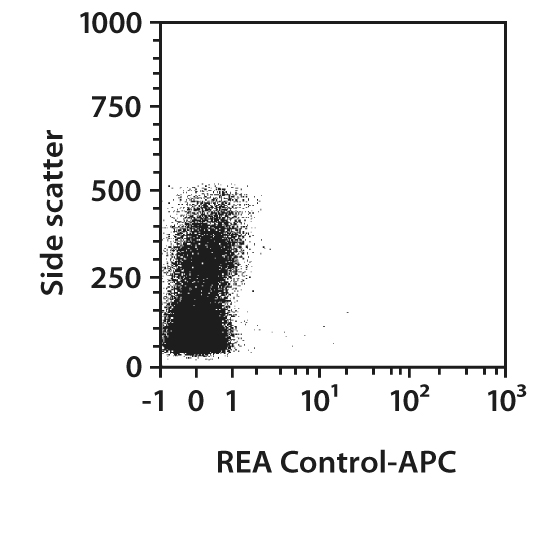 CD59 Antibody, anti-rat, REAfinity™