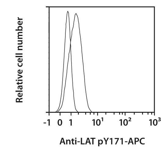 LAT pY171 Antibody, anti-human, REAfinity™