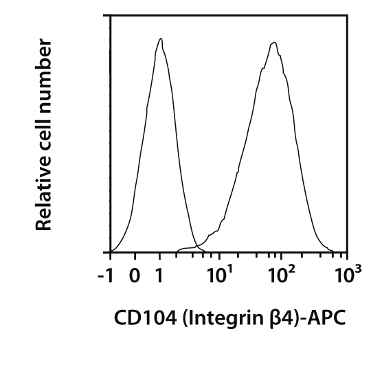 CD104 (Integrin β4) Antibody, anti-mouse, REAfinity™