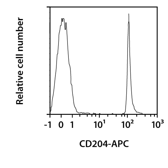 CD204 Antibody, anti-human, REAfinity™