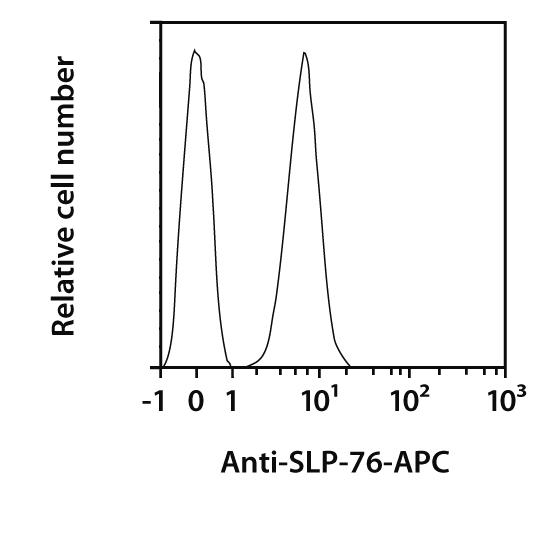 SLP-76 Antibody, anti-human, REAfinity™