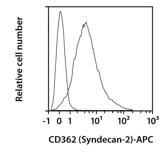 CD362 (Syndecan-2) Antibody, anti-human, REAfinity™