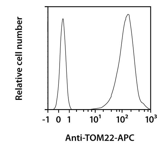 TOM22 Antibody, anti-human/mouse