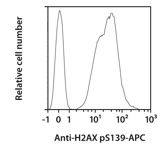 H2AX pS139 Antibody, anti-human/mouse, REAfinity™