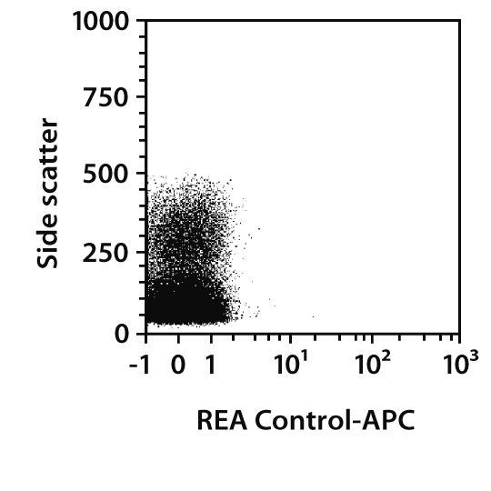 CD172a (SIRPα) Antibody, anti-rat, REAfinity™