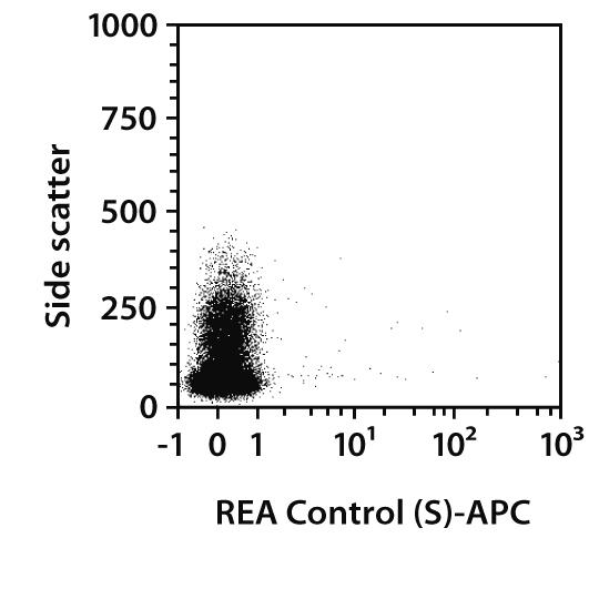 CD81 Antibody, anti-human, REAfinity™