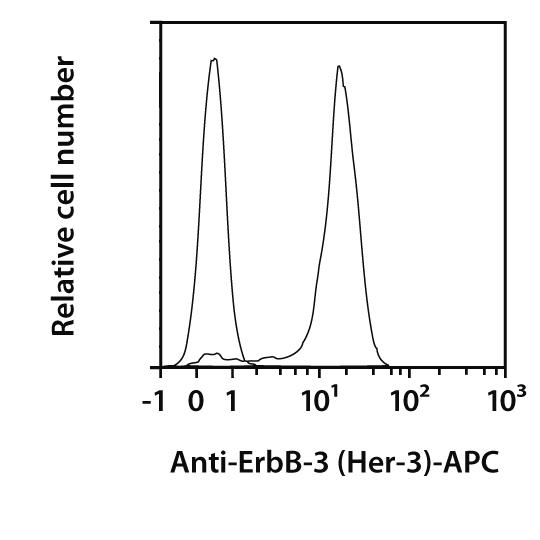 ErbB-3 (Her-3) Antibody, anti-human, REAfinity™