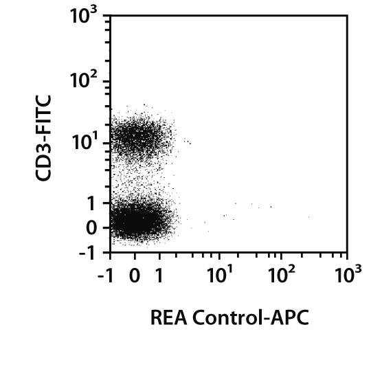 CD45 Antibody, anti-rat, REAfinity™
