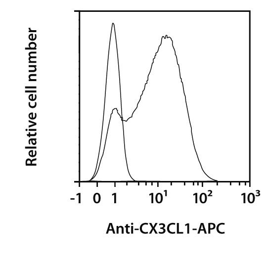 CX3CL1 Antibody, anti-human, REAfinity™