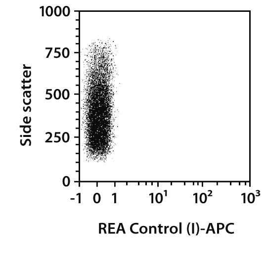 FoxA2 Antibody, anti-human, REAfinity™
