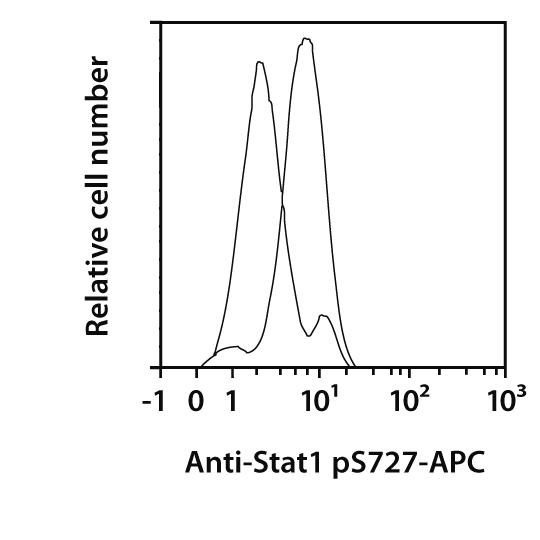 STAT1 pS727 Antibody, anti-human, REAfinity™