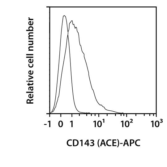CD143 (ACE) Antibody, anti-human, REAfinity™