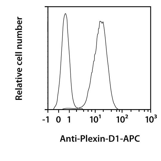 Plexin-D1 Antibody, anti-human, REAfinity™
