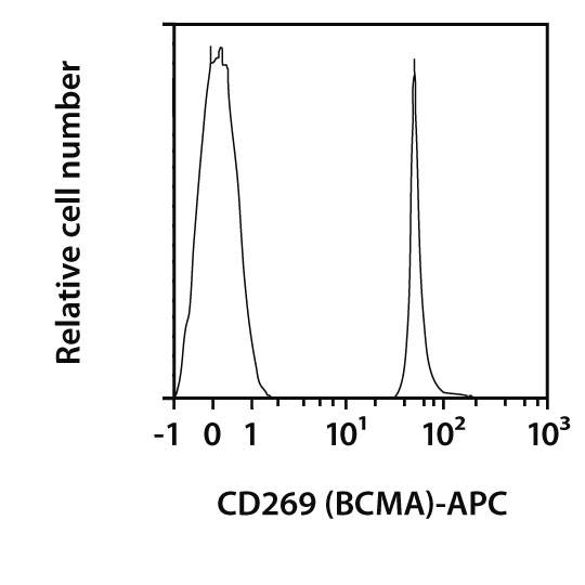CD269 (BCMA) Antibody, anti-mouse, REAfinity™