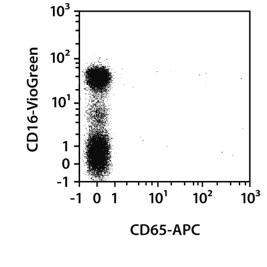 CD65 Antibody, anti-human