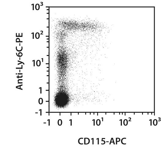 CD115 Antibody, anti-mouse