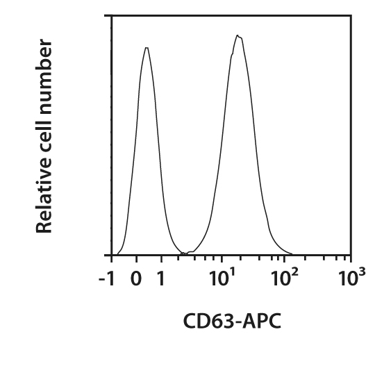 CD63 Antibody, anti-mouse, REAfinity™