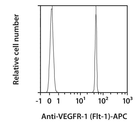 VEGFR-1 (Flt-1) Antibody, anti-human, REAfinity™